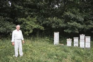 Honey Valley Beekeeping Dan O'Leary