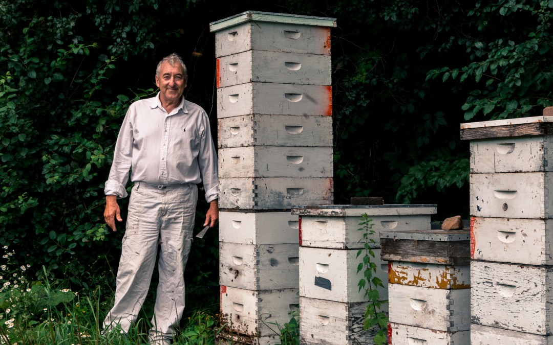 Beekeeping for Beginners Workshop March 2020